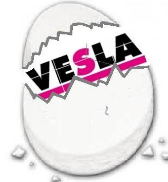 Empresas Desafio10x: VSC SPA