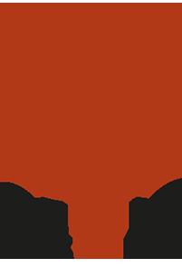 Empresas Desafio10x: CETTIC SIMULATORS SPA