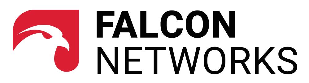 Empresas Desafio10x: Falcon Networks