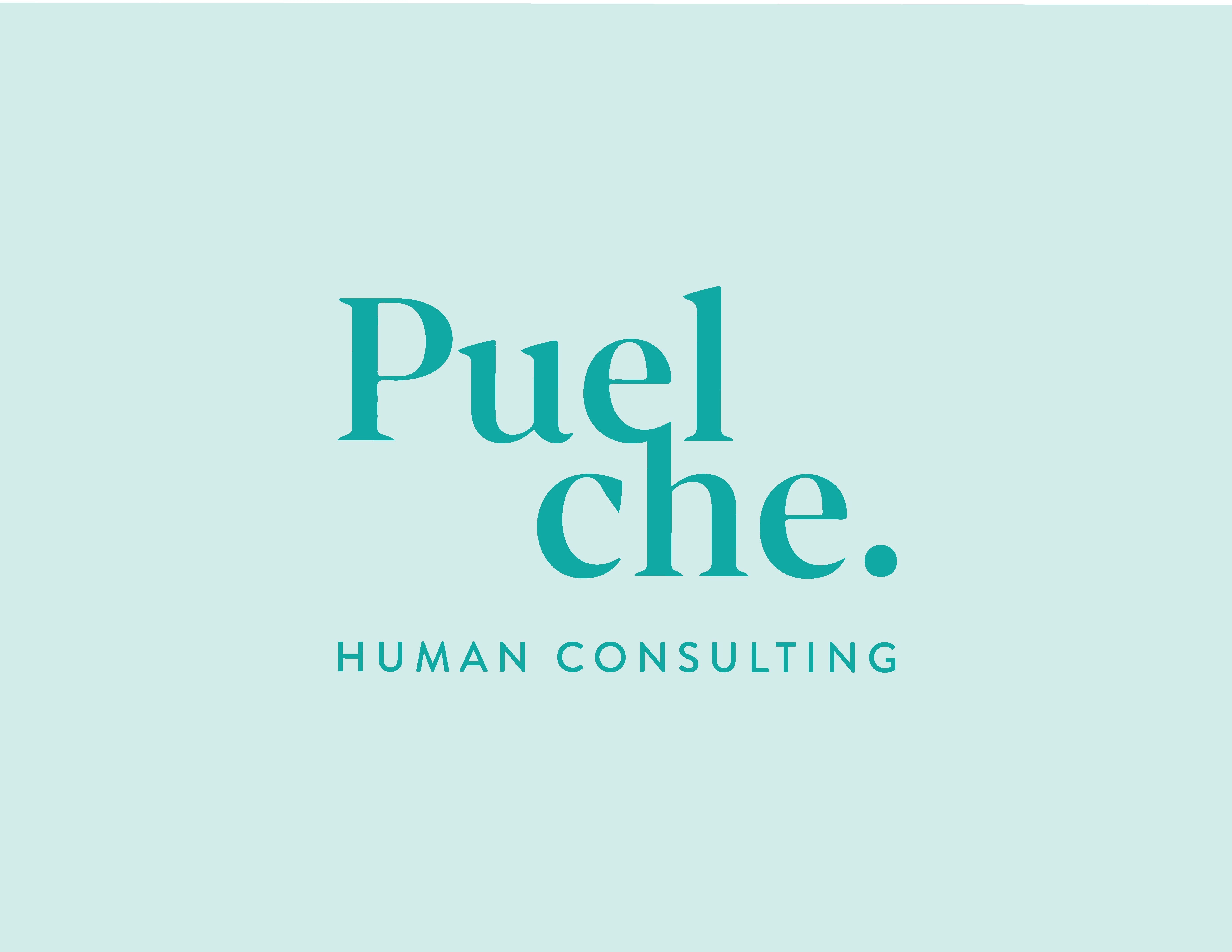 Empresas Desafio10x: Puelche Human Consulting